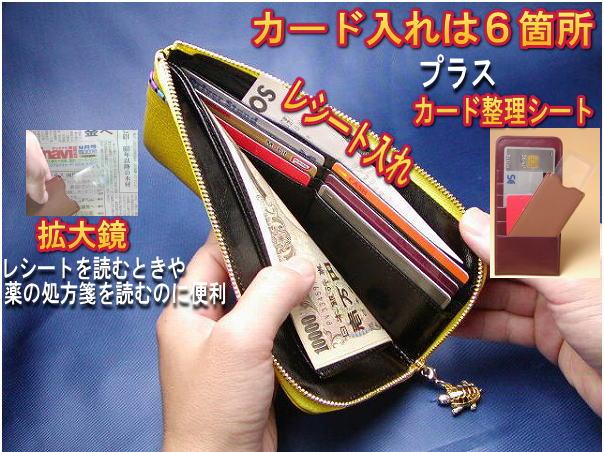 カード入れは6箇所プラスカード整理シート